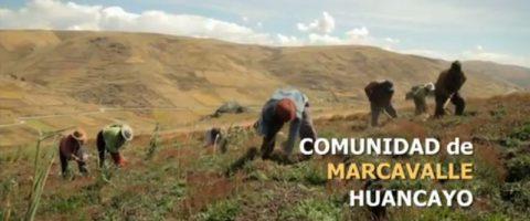 Lanzan spot de sensibilización por la seguridad de los territorios de las comunidades del Perú