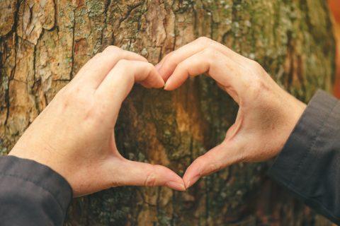 10 claves para ser una agencia más amigable con el medio ambiente